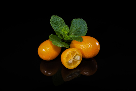 Picture no: 11436587 Kumquats 5 Created by: Erhard Hess