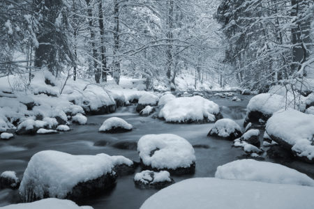 Picture no: 11441599 Winter im Harz Created by: Steffen Gierok