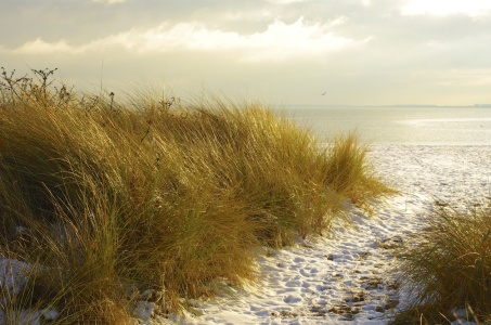 Picture no: 11442045 Winter am Meer Created by: Werner Reins