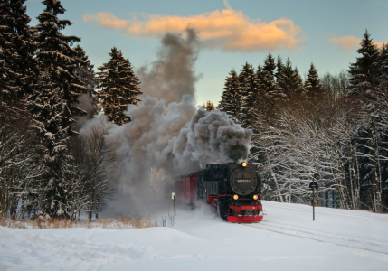 Picture no: 11448198 Harzquerbahn Created by: Steffen Gierok