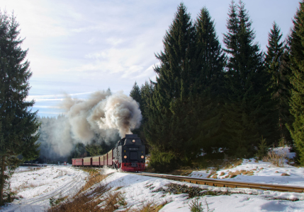 Picture no: 11448200 Harzquerbahn Created by: Steffen Gierok