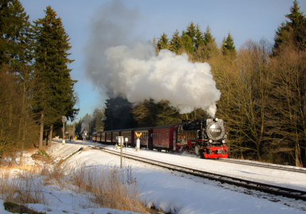 Picture no: 11448206 Harzquerbahn Created by: Steffen Gierok