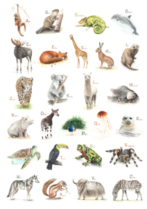 Picture no: 11494376 ABC Poster Tiere Created by: nadineconrad