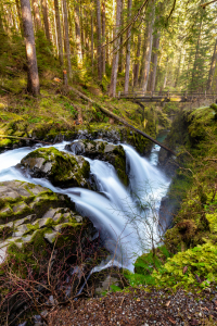 Picture no: 11499971 Sol Duc Waterfall - Oympic National Park Created by: TomKli