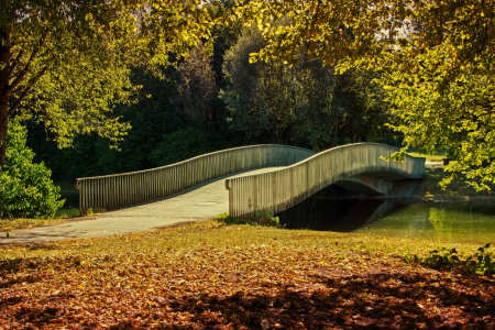 Picture no: 11549120 Brücke im Park Created by: SusaZoom