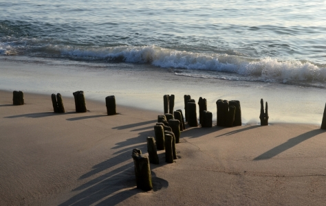 Picture no: 11572612 Nordseestrand Created by: Bauduin Ute