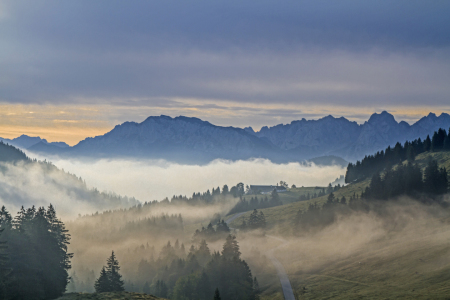 Picture no: 11576398 Nebel vor Wildem Kaiser Created by: EderHans