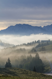 Picture no: 11576678 Nebel vor Wildem Kaiser Created by: EderHans
