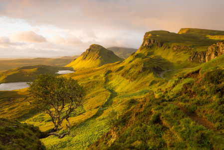 Picture no: 11598472 The Quiraing, Skye, Schottland Created by: orxy