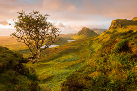 Picture no: 11598476 The Quiraing, Skye, Schottland Created by: orxy