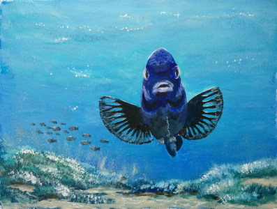 Picture no: 11605059 Fisch Created by: LiDija