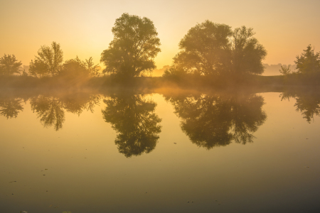 Picture no: 11606501 Herbstmorgen Created by: Martin Wasilewski