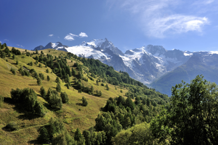 Picture no: 11616905 Alpenpanorama im Sommer Created by: KundenNr-160338