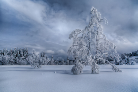 Picture no: 11628639 Wintertime Created by: Achim Thomae