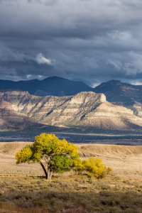 Picture no: 11691016 Utah Landscape Created by: TomKli