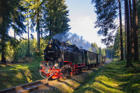 Picture no: 11694816 Harzquerbahn Created by: Steffen Gierok