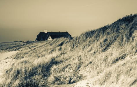 Picture no: 11721130 Sylt Created by: Werner Reins
