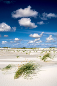 Picture no: 11721148 Nordseestrand Amrum Created by: Reiner Würz