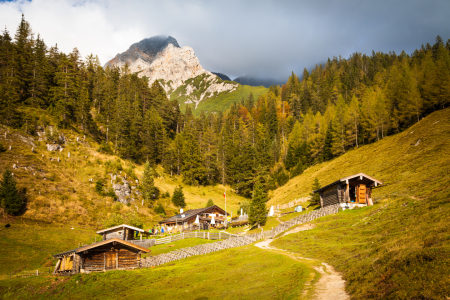 Picture no: 11729042 Steinalm Created by: janschuler