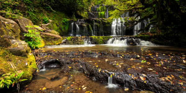 Picture no: 11735096 Purakaunui Falls Created by: TomKli