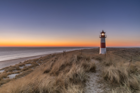Picture no: 11736902 Golden Morning - Sylt Created by: Achim Thomae