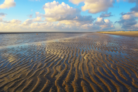 Picture no: 11784084 Abends am Strand - Insel Amrum Created by: Angela  Dölling