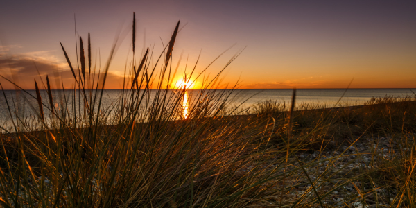 Picture no: 11786690 Sommerabend an der Ostsee Created by: Ursula Reins
