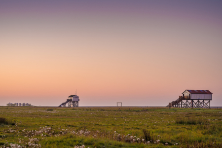 Picture no: 11806904 Morgen an der Nordsee Created by: Martin Wasilewski