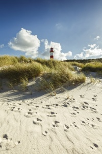 Picture no: 11822409 Typisch Sylt Created by: Ursula Reins