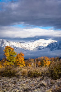 Picture no: 11843507 Herbst in den Tetons Created by: TomKli