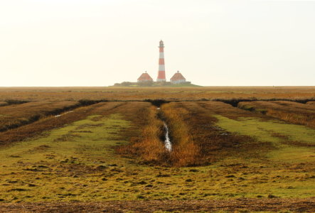 Picture no: 11862796 Westerhever Created by: Heike Hultsch