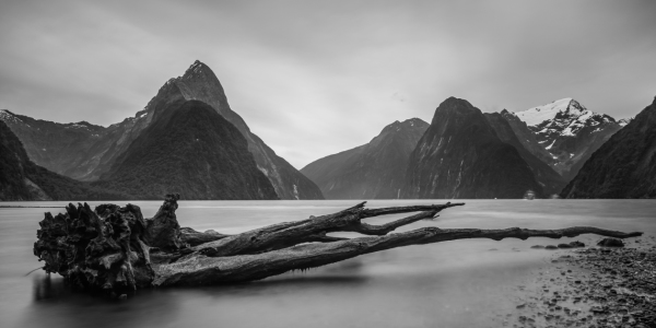 Picture no: 11876411 Milford Sound Impression Created by: make