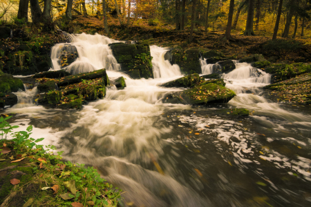Picture no: 11882890 Selkefall im Harz Created by: Martin Wasilewski