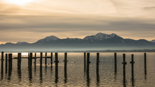 Picture no: 11886617 Chiemsee Morgenblick Created by: luxpediation