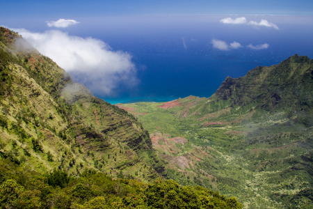 Picture no: 11893500 Kalalau Valley auf Kauai Created by: DirkR