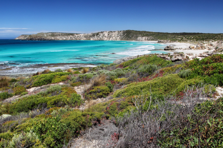 Picture no: 11902128 Pennington Bay auf Kangaroo Island Created by: DirkR