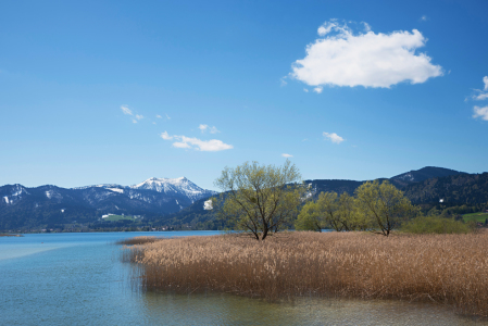 Picture no: 11905463 Fruehling am Tegernsee Created by: SusaZoom