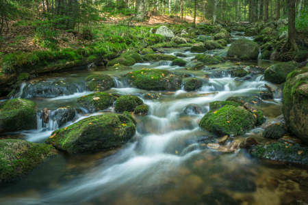 Picture no: 11915415 Fluss Bach Wald Wasser Steine Natur Created by: luxpediation