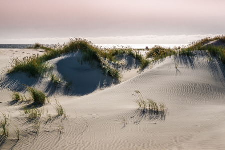 Picture no: 11915593 Twilight - Amrum am Abend Created by: Reiner Würz