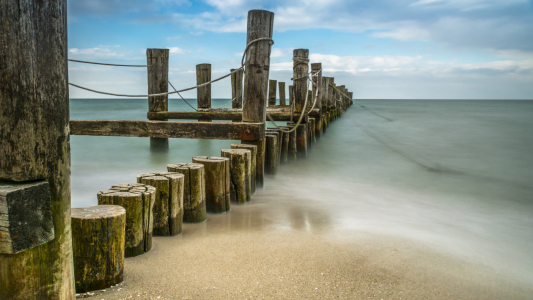 Picture no: 11917816 Zingst im Darß Nationalpark Created by: luxpediation
