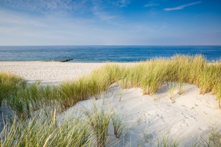 Picture no: 11918269 Sommer auf Sylt Created by: Ursula Reins