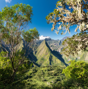 Picture no: 11935341 Cirque de Mafate - La Reunion - Frankreich Created by: orxy