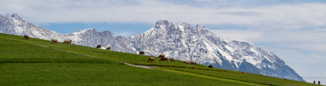 Picture no: 11938868 Alpen Karwendel Tirol Gebirge Created by: wompus