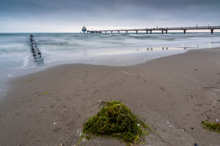 Picture no: 11942235 Morgen in Zingst Created by: Martin Wasilewski