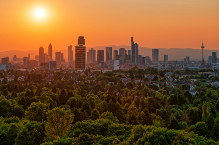 Picture no: 11942394 Frankfurt Skyline Sonnenuntergang Created by: Jens Hollerith