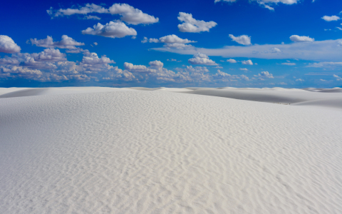 Picture no: 11967880 White Sands  Created by: Radek  Hofman