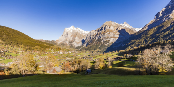 Picture no: 11968122 Grindelwald in der Schweiz Created by: dieterich