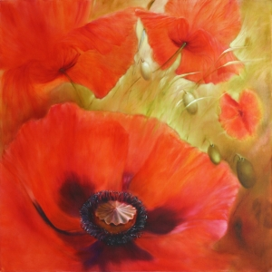 Picture no: 11976664 Vier mal Mohn Created by: AnnetteSchmucker
