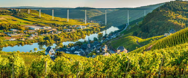 Picture no: 12014500 Mosel bei Ürzig -13- Created by: Erhard Hess