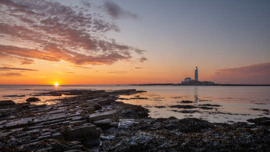Picture no: 12018565 St Mary's Lighthouse Leuchtturm - Northumberland Created by: orxy
